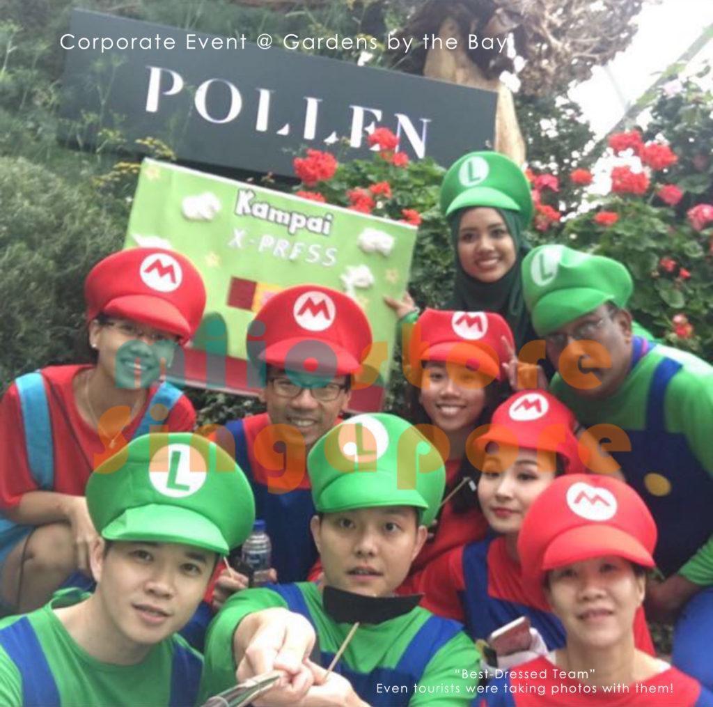 Mario Costumes Singapore